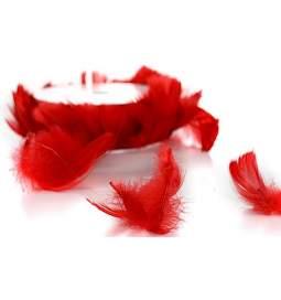 Poročna dekoracija, Peresa na žici, rdeča