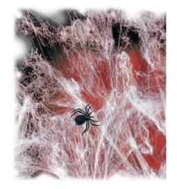 Bela pajkova mreža s pajkom