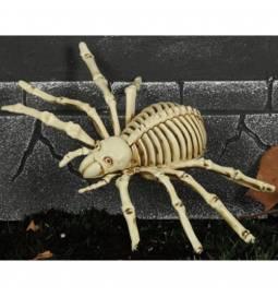 Strašljiv pajek okostnjak